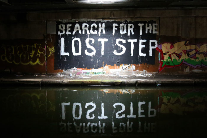 SEARCH FOR THE LOST STEP (2019)